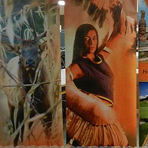 Cherokee Retractable Banners